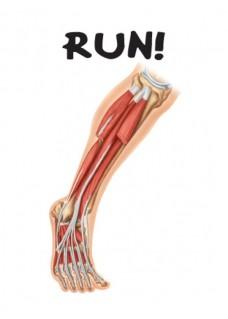 Postkarte Anatomie 3er Set